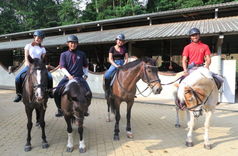 Horse Riding EFS
